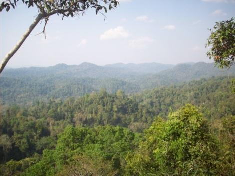 Bokeo Natural Reserve
